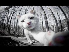 Hermosa selfi