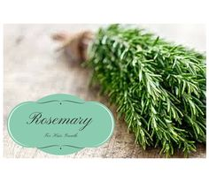 Rosemary Is Great For Hair Growth Here Are 5 Ways To Use It!  Read the article here - http://www.blackhairinformation.com/growth/hair-growth/rosemary-great-hair-growth-5-ways-use/