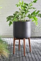 Next Tall Plant Stand - Black Black Plant Stand, Tall Plant Stands, Metal Plant Stand, Metal Wall Planters, Face Planters, Planter Pots, Buy Plants, Tall Plants, Potted Plants