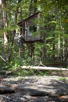 A casa na árvore construída por Jared Handelsman para o casal de filhos, agora é uma câmara escura utilizada para os trabalhos fotográficos do artista