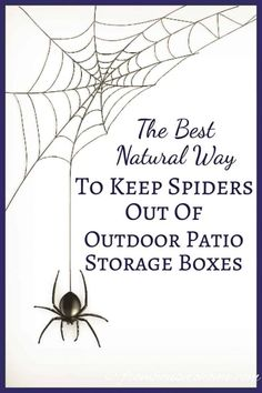 Buy Flowers Online Same Day Delivery This Natural Way To Keep Spiders Out Of Outdoor Patio Storage Boxes Is The Best It Doesn't Use Pesticides Or Other Harmful Chemicals. Furthermore, It's So Easy, I'm Going To Try It In My Shed, Too. Certainly Pinning Outdoor Storage Boxes, Patio Storage, Patio Cushion Storage, Patio Cushions, Storage Sheds, Porches, Deck Cleaner, Get Rid Of Spiders, Best Pest Control
