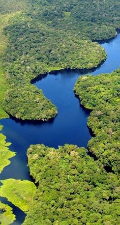 Aerial view of the Amazon River, Brazil.