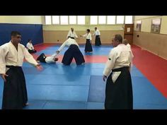AIKIDO - Stage de Préparation au Passage de Grade DAN et Kyu du 27 janvier 2018 - AIKIDO-BUDO. Vidéo N°10 by Americo Mariano. #aikido #stageaikido