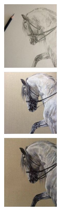 Equine art from sketch to signature with Tony O'Connor. 'Spanish Arch' Prints available here: http://white-tree-studio-online-store.myshopify.com/products/spanish-arch-1