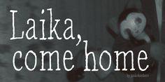 Laika, come home Font · 1001 Fonts