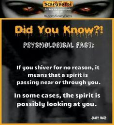 Wow that explains a lot Wow Facts, Real Facts, Wtf Fun Facts, Funny Facts, Random Facts, True Facts, Scary Horror Stories, Spooky Stories, Ghost Stories