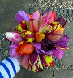 Lovely lovely tulips from yarnstorm