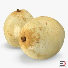 3D Nashi Pear model