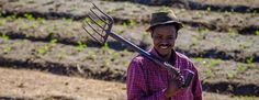 Interview, Afrique du Sud - Relever le défi de l'autonomie alimentaire et de l'agriculture biologique, créer une dynamique communautaire au-delà des clivages hérités de l'Apartheid, faire acte d'histoire et de mémoire à partir d'un terrain vague dans une banlieue du Cap : c'est le pari qu'est en passe de remporter la ferme urbaine d'Oranjenzicht. « 7 Lames la Mer » a interviewé Sheryl Ozinsky, fondatrice de l'Oranjenzicht City Farm (OZCF).