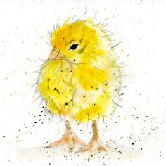 Chick Greeting Card   Cute Yellow Chicken by TheSkinnyCardCompany