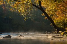 We LOVED tubing down the Coosawattee River, GA.