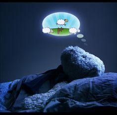 A dreaming teddy bear