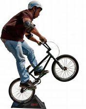 Mini BMX Skateboard Launch Ramp Free shipping Great Chrismas Gift Ideas !