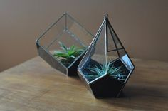 NEW Magus Teardrop Terrarium teardrop glass by ABJglassworks, $115.00