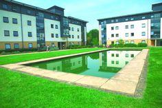Roehampton University Dorms | CISabroad.com