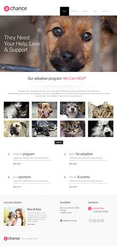 WordPress #template // Regular price: $75 // Unique price: $4500 // Sources…