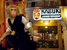 Amazing monkey waiters that serve tables in a restaurant |