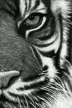 Lindo desenho Scratchboard Art, Scratch Art, Painting & Drawing, Emboss, Emboss Painting
