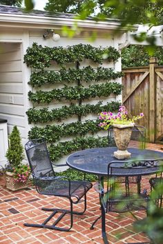 Vertical gardens aren't new, but living walls have gained newfound popularity. If you don't want to tend a garden on a wall, you can use an espaliered tree to soften a patio's border.