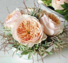 """Rosa Juliet é conhecida como """"a flor dos 15.8 milhões de dólares"""". Esta flor foi introduzida no mercado no ano de 2006, em uma exibição de flores ocorrida em Chelsea, Londres. Seu criador, David Austin, investiu 15 anos de sua vida e 6 milhões de dólares no processo de criação.  Atualmente, um ramo destas rosas pode custar algo em torno de R$ 350,00."""