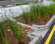 Clean Water Nashville Program: Green Infrastructure Practices - 28th avenue green street