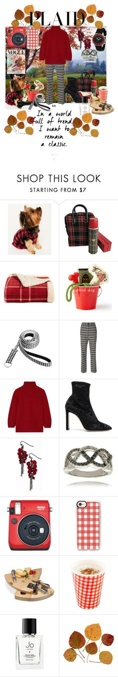 """Autumn Picnic"" by sallytcrosswell on Polyvore featuring Karen Neuburger, Martha Stewart, Harry Barker, Pottery Barn, Victoria Beckham, MaxMara, Jimmy Choo, 1928, HMY Jewelry and Finesque"