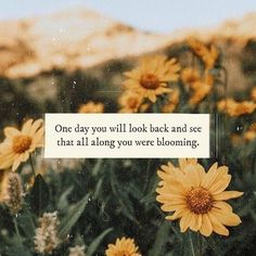 Flower quotes - The Awaken Collective Pretty Quotes, Cute Quotes, Short Quotes Love, Happy Quotes, Positive Quotes, Motivational Quotes, Inspirational Quotes, Positive Affirmations, Positive Vibes