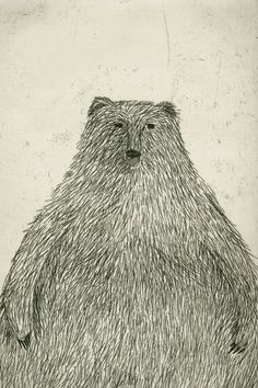 Black Bear: etching.  Kristiana Pam