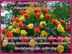 Imagini pentru buna dimineata suflete dragi Plants, Flora, Plant, Planting