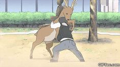 The perfect Suplex Bear Anime Animated GIF for your conversation. Discover and Share the best GIFs on Tenor. Nichijou, Ghibli, Aho Girl, Otaku, Bear Gif, Popular Anime, Ordinary Lives, Cool Animations, Best Actor