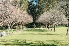 The Grounds at The Convent #peppersconvent #huntervalley #wedding #weddinginspo #garden #organic #farming