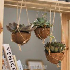 Bamboo Planter, Diy Hanging Planter, Diy Planters, Hanging Planters, House Plants Decor, Plant Decor, Coconut Shell Crafts, Diy Crafts Hacks, Decoration