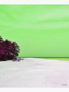 """""""Sandy beach, palms, sky and sea in green and violet"""" Mounted Print by Artlajf   Redbubble Palms, Nature Photos, Wood Print, Photo Art, Canvas Prints, Sky, Explore, Wall Art, Beach"""
