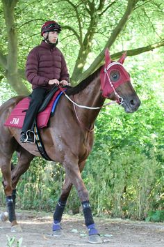 ABLE FRIEND has final fast gallop this morning. #RoyalAscot http://bit.ly/1FODRHl