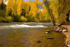 conejos river valley - Yahoo Image Search Results