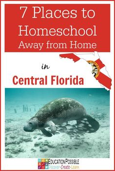 7 Places to Homeschool Away from Home in Central Florida - Education Possible Here are 7 of our favorite places to homeschool away from home in Central Florida. Here's an idea - turn your family vacation into an educational experience for your teens.