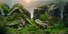 Акваскейп: фантастические пейзажи для ваших рыбок - SkillsUp - удобный каталог уроков по дизайну, компьютерной графике, уроки фотошопа, Photoshop lessons