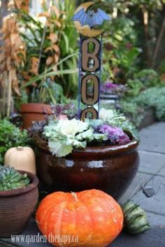 Weekend Project: Halloween Planters - Garden Therapy