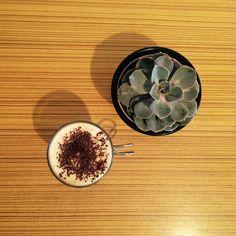 Café e Suculenta