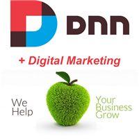Choosing the best website software for optimal digital marketing Website Software, Blog Website Design, Design Blogs, Business Help, News Articles, Digital Marketing, Good Things