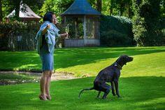 Bei einer Hochzeit sind Hunde immer beliebte Gäste - auch wenn sie manchmal den Rasen ruinieren... #hochzeithund #reception #dogsatwedding #hochzeitsfotograf