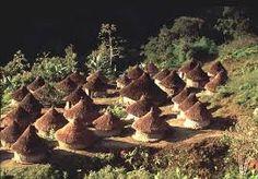 Resultado de imagen para fondos de pantalla paisajes colombianos