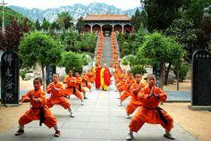 Shaolin Martial Arts Kids