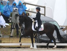 Sweden Wins Falsterbo Nations Cup for 3rd Year, Russia 2nd, Denmark 3rd, USA 4th – Dressage-News