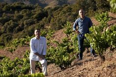The Resilience of Spain's Priorat.