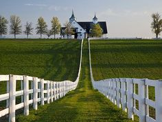 Lexington Kentucky & Virginia to tour the legendary Thoroughbred Horse Farms