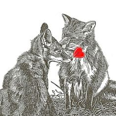 Fox Card Valentine and Heart Lollipop Red Foxes by maryjill, $4.00