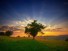 """""""The earth is the Lord's, and everything in it."""""""