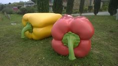 genetisch gemanipuleerde paprika's?