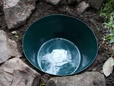 How to make a mini wildlife pond – the easy way - Mini Garden Garden Pond Design, Bog Garden, Easy Garden, Ponds For Small Gardens, Small Ponds, Pond Landscaping, Ponds Backyard, Container Water Gardens, Diy Container Pond